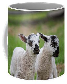 Lamb Twins Coffee Mug