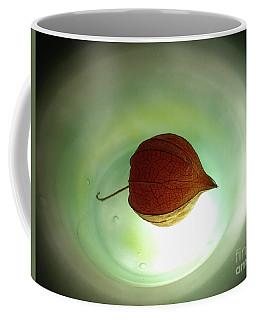 Lampionblume - Physalis Alkekengi Coffee Mug