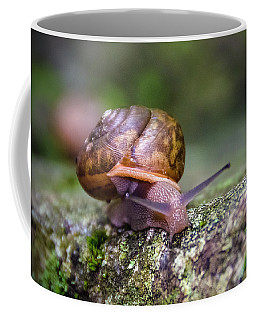 Land Snail II Coffee Mug