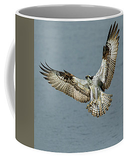 Osprey Approach Coffee Mug