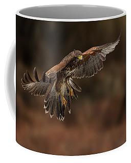 Landing Approach Coffee Mug