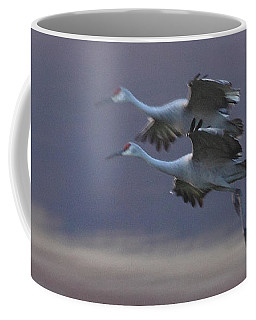 Coffee Mug featuring the photograph Landing Gear Down by Shari Jardina