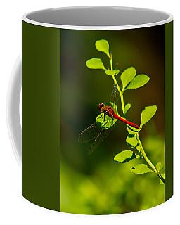Landing Pad Coffee Mug