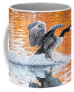 Landing Coffee Mug