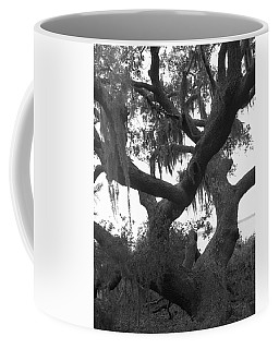 Lands End Talking Tree Coffee Mug