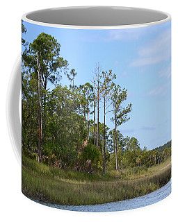 Coffee Mug featuring the photograph Landscape And Blue Sky by Carol  Bradley