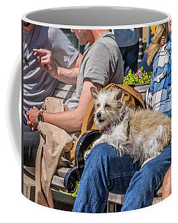 Lap Dog Coffee Mug