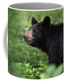Coffee Mug featuring the photograph Large Black Bear by Andrea Silies