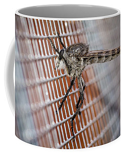 Coffee Mug featuring the photograph Large Robber Fly  by John Brink