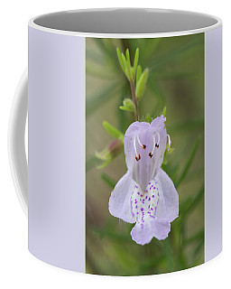 Largeflower False Rosemary #1 Coffee Mug