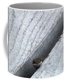 Larry The Hungry Lizard Coffee Mug by Belinda Lee