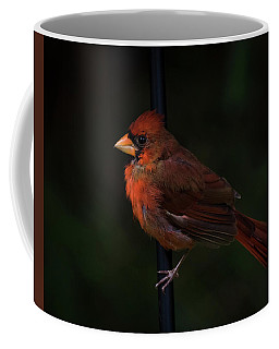 Last Light Of Day Coffee Mug