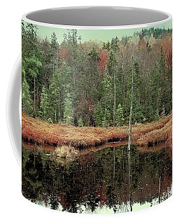 Coffee Mug featuring the photograph Last Of Autumn On Fly Pond by David Patterson