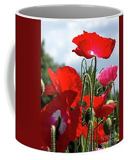 Last Poppies Of Summer Coffee Mug by Stephen Melia