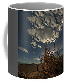 Late Afternoon In The Bristlecone Forest Coffee Mug