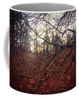 Late Autumn Morning Coffee Mug