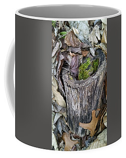 Late Fall Reflections Coffee Mug