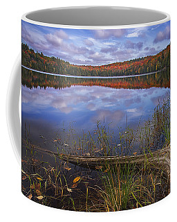 Late Fall Reflections Coffee Mug