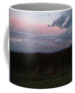 Coffee Mug featuring the photograph Late Light by Laurie Stewart