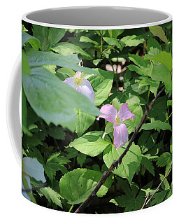 Late Season Trillium Coffee Mug