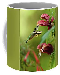 Late Summer Garden Coffee Mug