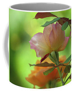 Late Summer Roses - Images From The Garden - Floral - Photography Coffee Mug