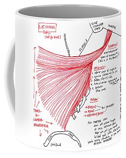 Latissimus Dorsi Coffee Mug