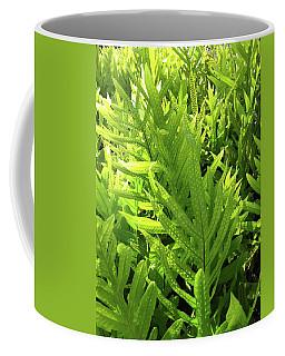 Lauae Fern Coffee Mug