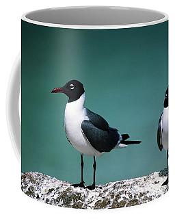 Laughing Gulls Coffee Mug by Sally Weigand