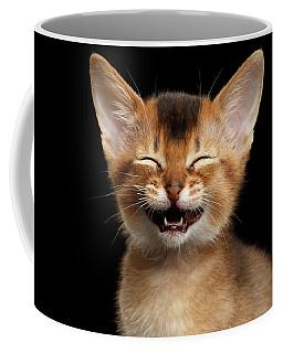 Coffee Mug featuring the photograph Laughing Kitten  by Sergey Taran