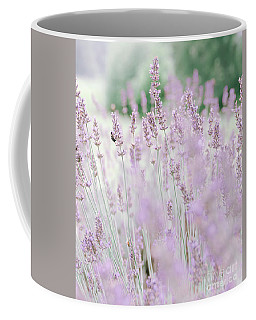 Coffee Mug featuring the photograph Lavender 6 by Andrea Anderegg