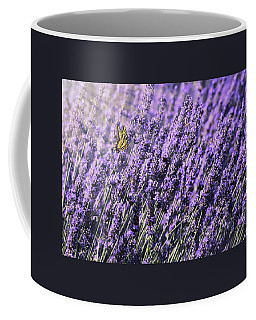 Coffee Mug featuring the photograph Lavender And Tiger Swallowtail In The Morning Light by Diane Schuster
