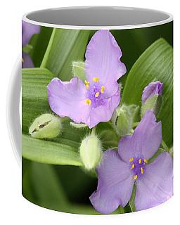 Lavender Blooms In Spring Coffee Mug
