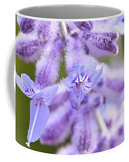 Coffee Mug featuring the photograph Lavender Blooms by Kerri Farley