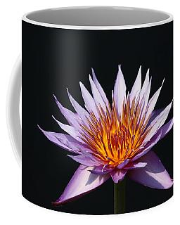 Lavender Fire 1 Coffee Mug