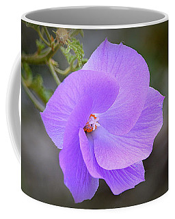 Coffee Mug featuring the photograph Lavender Flower by AJ Schibig