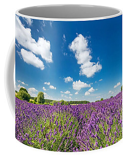 Lavender Flower Field In Full Bloom, Sunny Blue Sky Coffee Mug