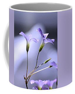 Lavender Flowers Coffee Mug