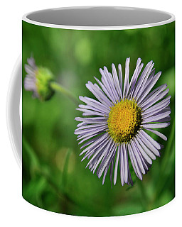Lavender Serenity Coffee Mug