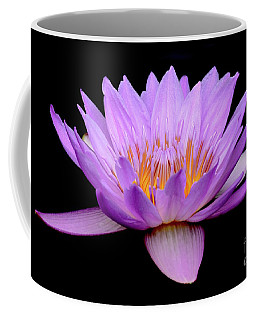 Lavender Tropical Day Lily Coffee Mug