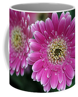 Layers Of Spring Coffee Mug by Pamela Critchlow