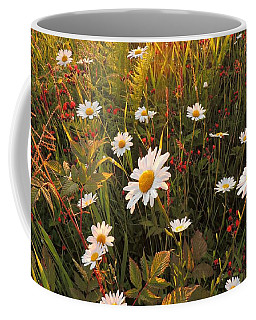 Lazy Days Daisies Coffee Mug