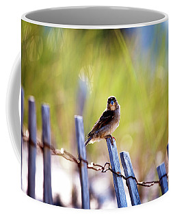 Coffee Mug featuring the photograph Lbi Beach Bird by John Rizzuto
