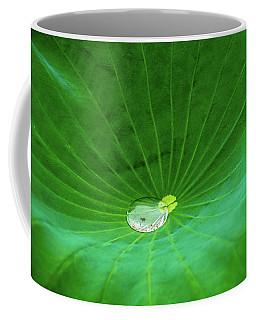 Leaf Cupping A Giant Water Drop Coffee Mug