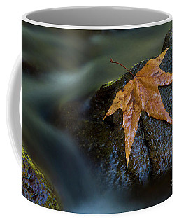 Leaf On A Rock Coffee Mug