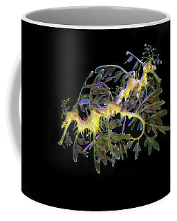 Leafy Sea Dragons Coffee Mug