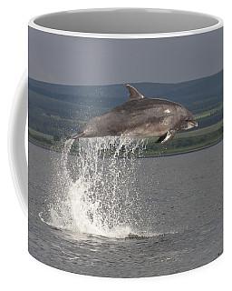 Leaping Bottlenose Dolphin  - Scotland #39 Coffee Mug