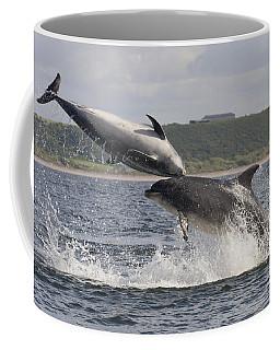 Leaping Bottlenose Dolphins - Scotland  #38 Coffee Mug