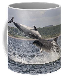 Leaping Bottlenose Dolphins - Scotland  #38 Coffee Mug