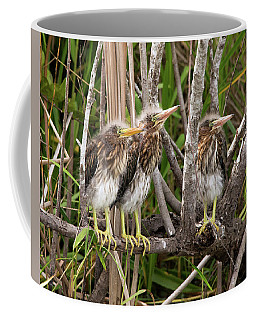Learning To Be Self Sufficient Coffee Mug